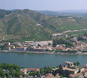 Tournon, and Cotes du Rhone vineyards