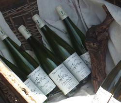 Alsace wine bottles