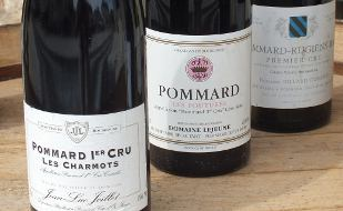 Top quality Burgundies