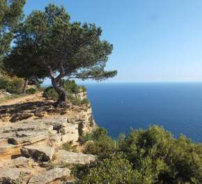 Map Of South West France Coast.The South Of France An Essential Travel Guide